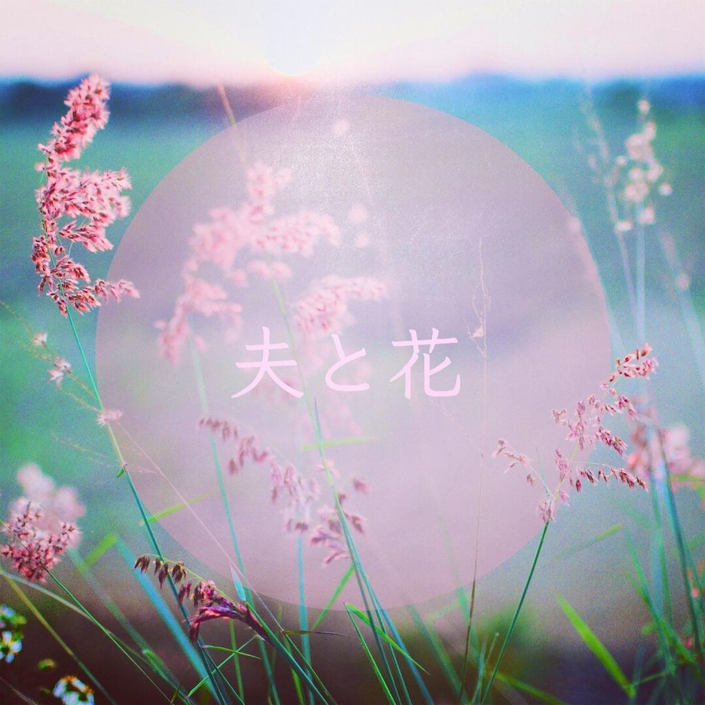 f:id:yoshikoyamamoto1126:20190418060556j:image