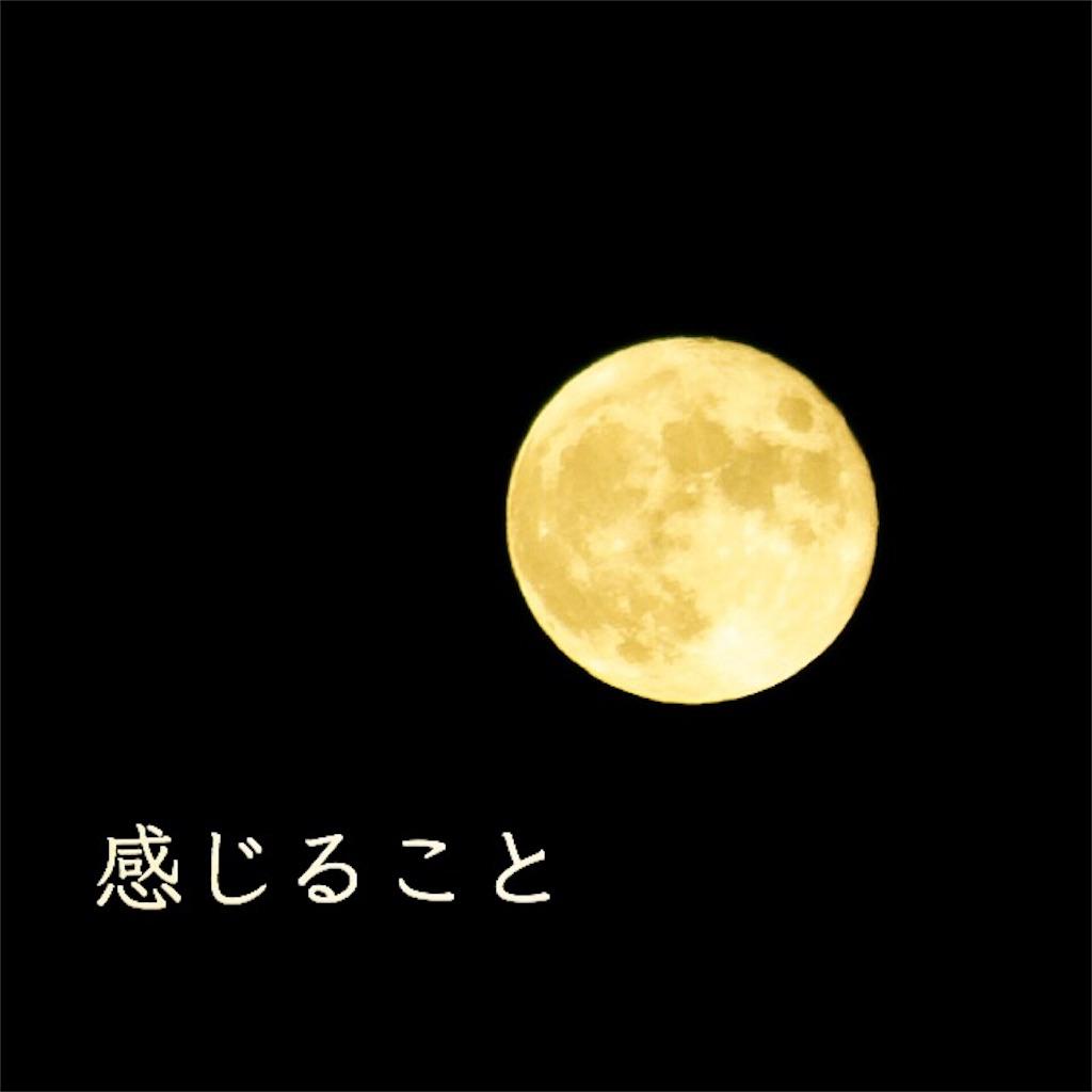 f:id:yoshikoyamamoto1126:20190419200652j:image