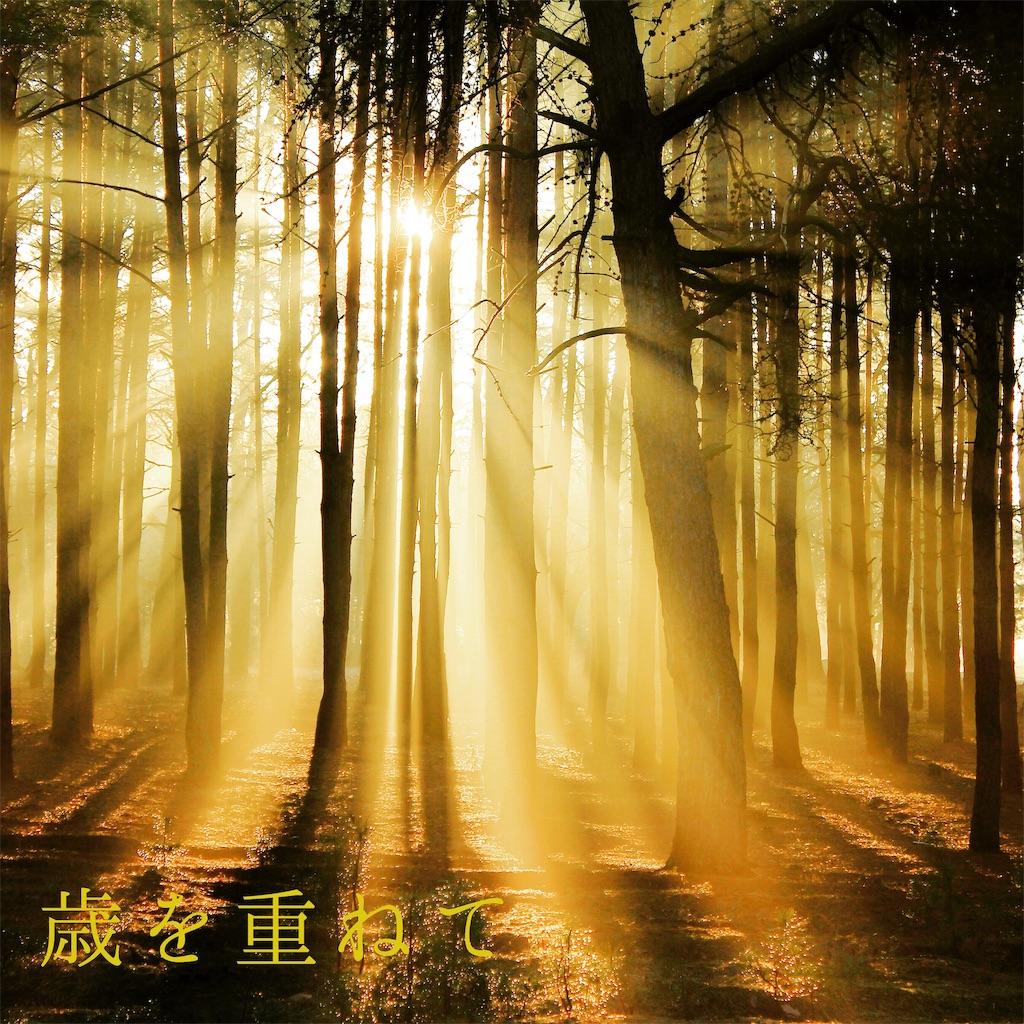 f:id:yoshikoyamamoto1126:20190521064852j:image