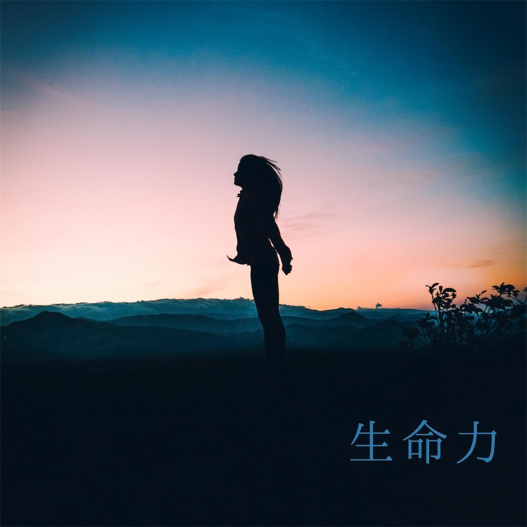 f:id:yoshikoyamamoto1126:20190601154900j:image
