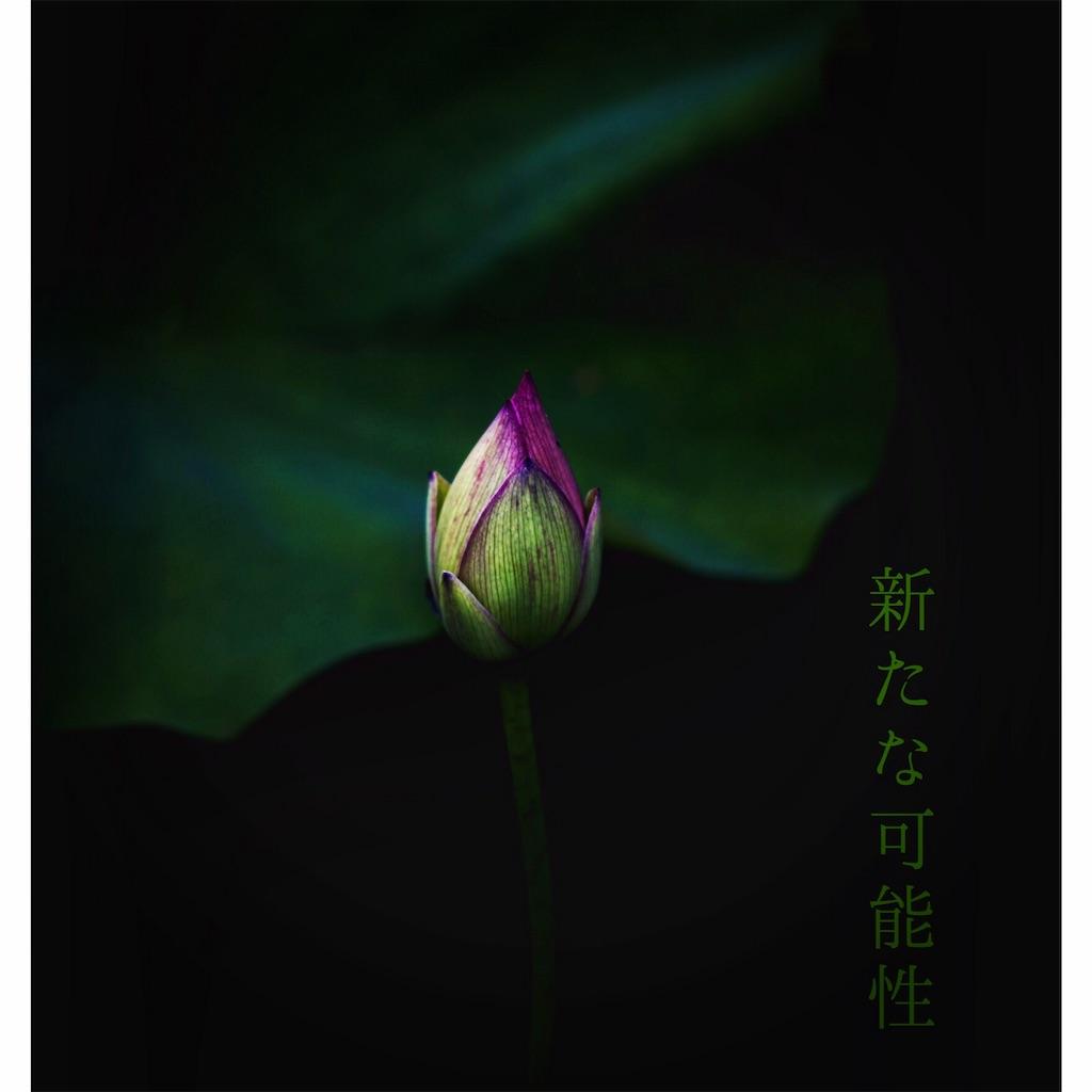 f:id:yoshikoyamamoto1126:20190604095328j:image