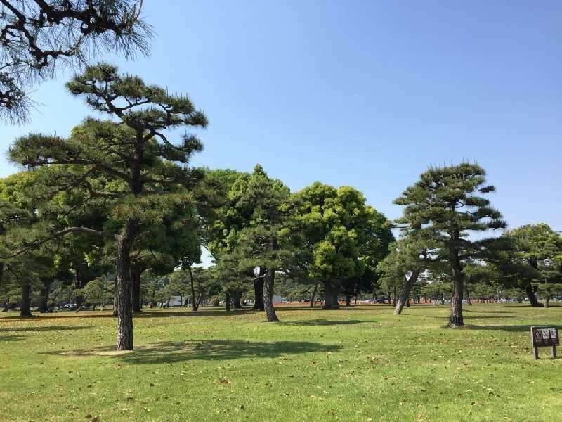 f:id:yoshimamo:20180501190529j:plain