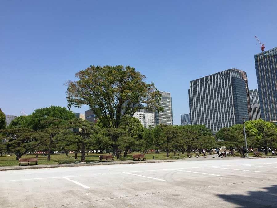 f:id:yoshimamo:20180501191459j:plain