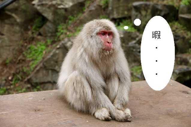 f:id:yoshimamo:20190326175100j:plain