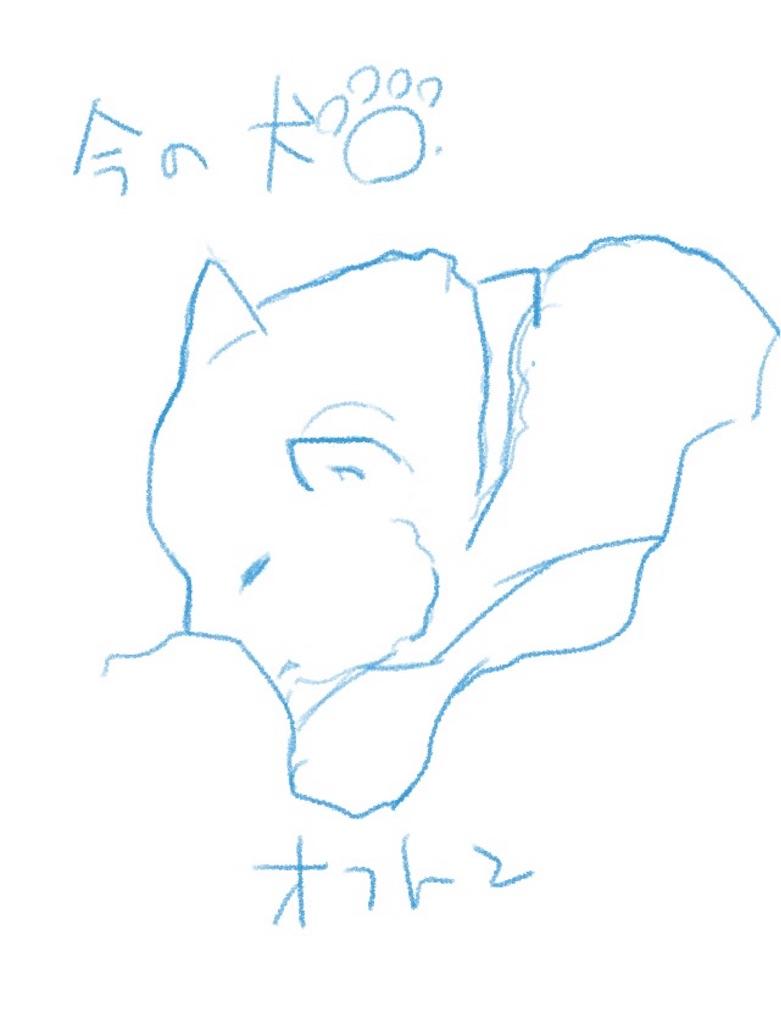 f:id:yoshimatsury:20190407225648j:image