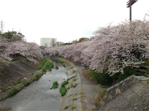 f:id:yoshimie:20170408165647j:image