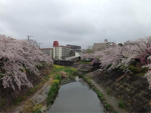 f:id:yoshimie:20170409165004j:image