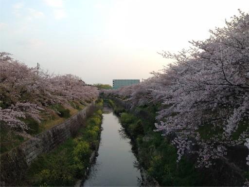 f:id:yoshimie:20170415055813j:image