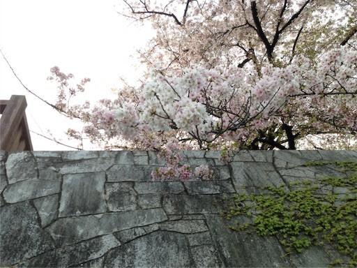 f:id:yoshimie:20170415055924j:image