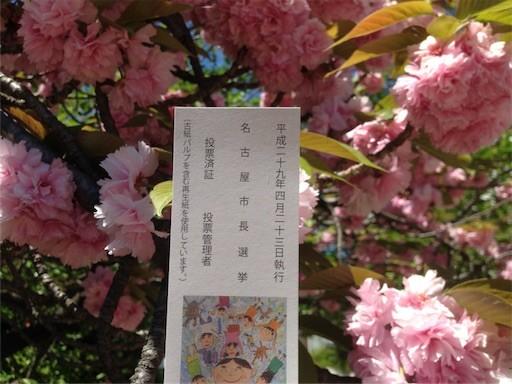 f:id:yoshimie:20170424070129j:image