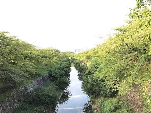 f:id:yoshimie:20170818031632j:image