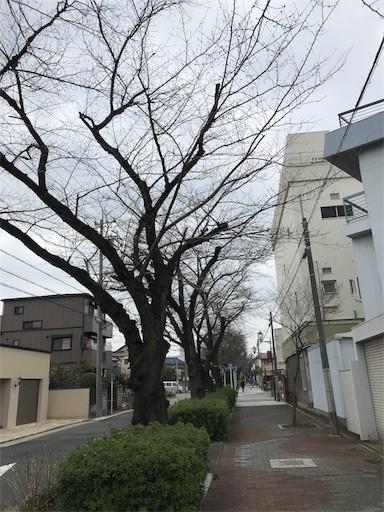 f:id:yoshimie:20180310081745j:image