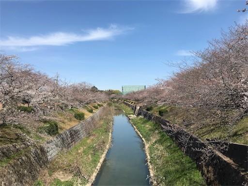 f:id:yoshimie:20180328115942j:image