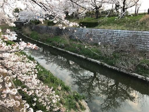 f:id:yoshimie:20180328130723j:image
