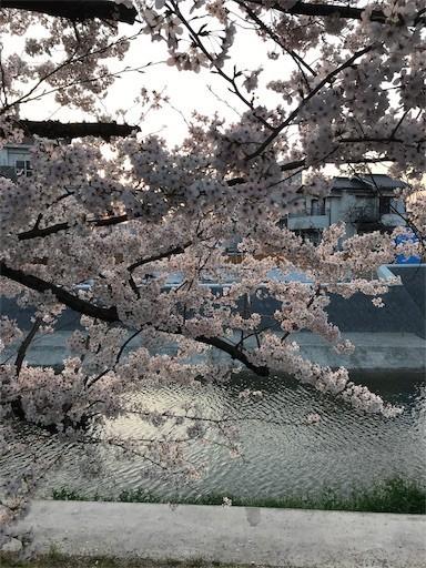 f:id:yoshimie:20180329104427j:image