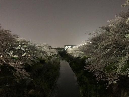 f:id:yoshimie:20180330140836j:image