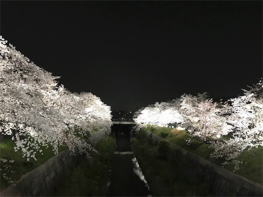 f:id:yoshimie:20180330140930j:image