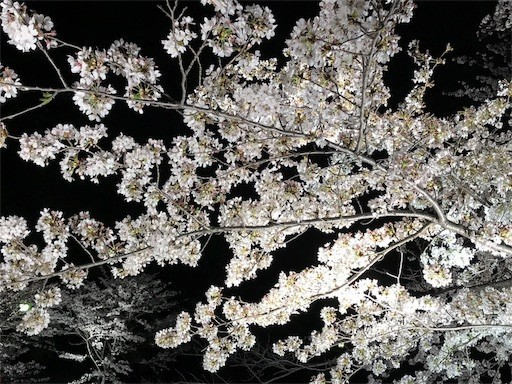 f:id:yoshimie:20180330141020j:image