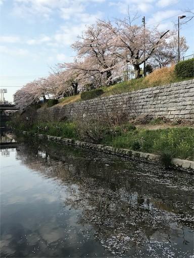 f:id:yoshimie:20180331104602j:image