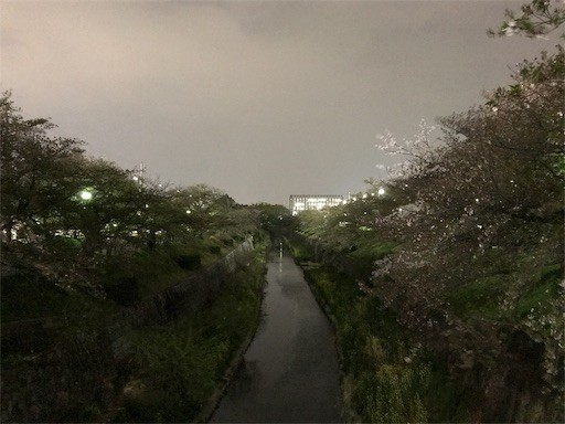 f:id:yoshimie:20180406072526j:image