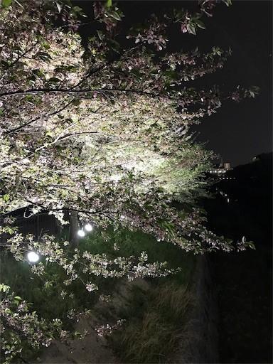 f:id:yoshimie:20180406072705j:image