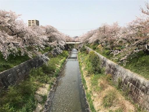 f:id:yoshimie:20180406074836j:image