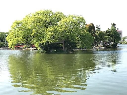 f:id:yoshimie:20180420144549j:image