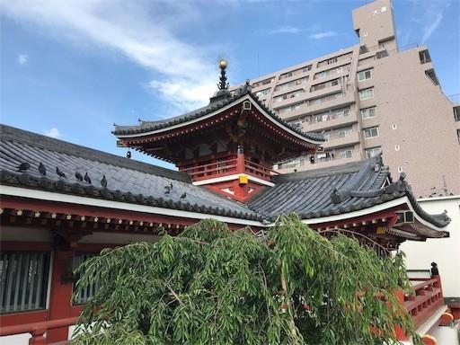 f:id:yoshimie:20180603202816j:image