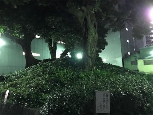 f:id:yoshimie:20181018161625j:image