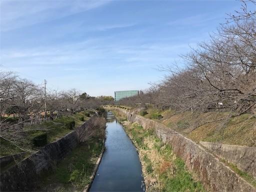 f:id:yoshimie:20190323084524j:image