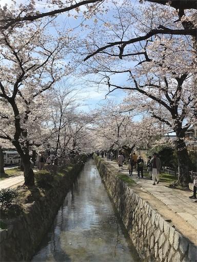 f:id:yoshimie:20190405223714j:image