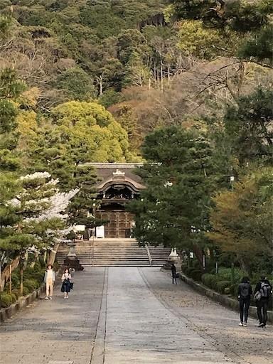 f:id:yoshimie:20190405224003j:image