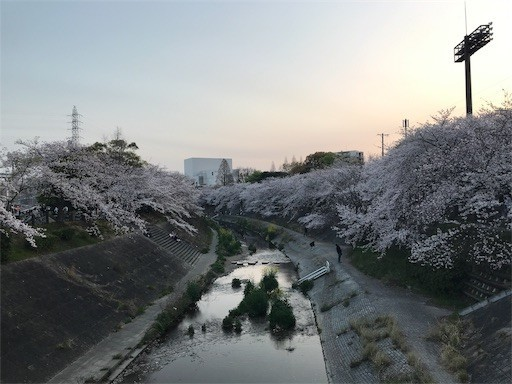 f:id:yoshimie:20190414074026j:image