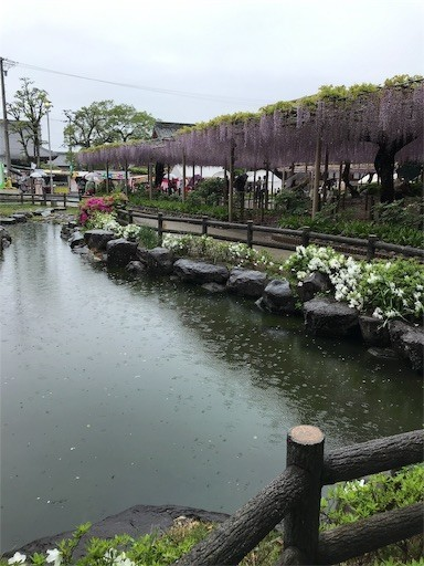 f:id:yoshimie:20190501143832j:image