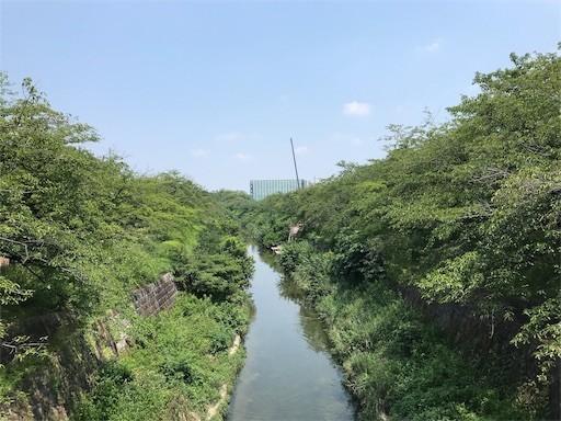 f:id:yoshimie:20190801125316j:image