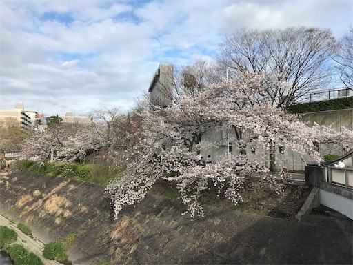 f:id:yoshimie:20200402164006j:image