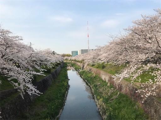 f:id:yoshimie:20200412143131j:image