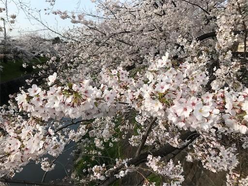 f:id:yoshimie:20200412143150j:image