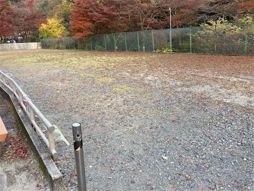 f:id:yoshimie:20201119052959j:image