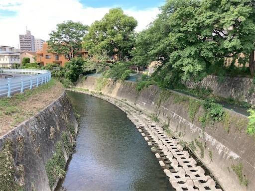 f:id:yoshimie:20210719073131j:image