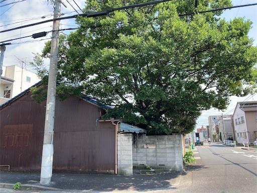 f:id:yoshimie:20210722135136j:image