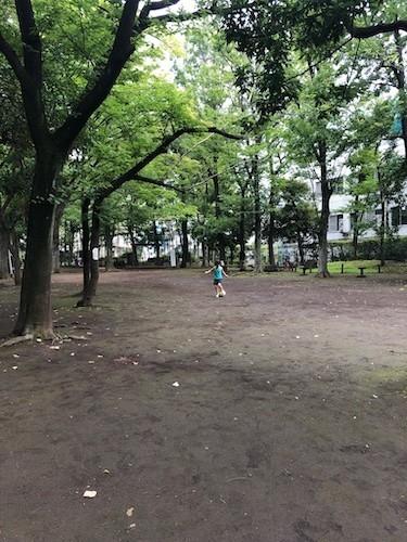 f:id:yoshimiradikorn:20190721140705j:plain