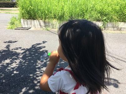 f:id:yoshimuraneko:20190814123803j:plain