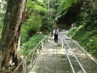 笠森観音道階段