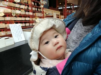 鎌倉鶴岡八幡宮参拝