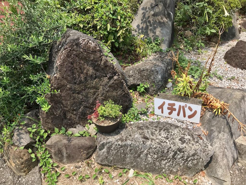 f:id:yoshink4:20200807143402j:image