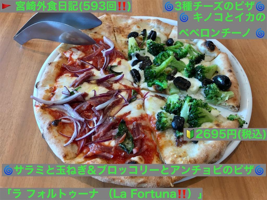 f:id:yoshink4:20210120072500j:image