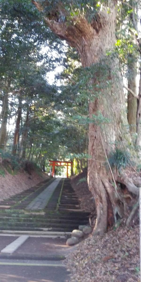 f:id:yoshinobu44:20200113225923j:plain