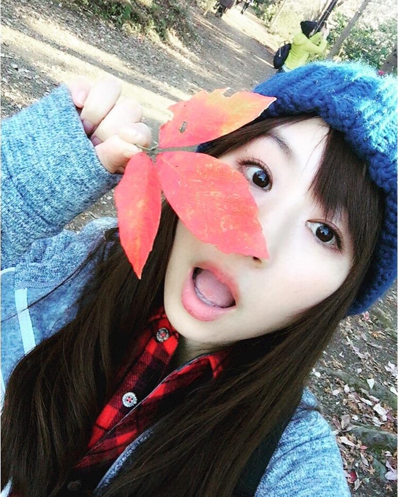 f:id:yoshinokaori:20161218214440j:plain