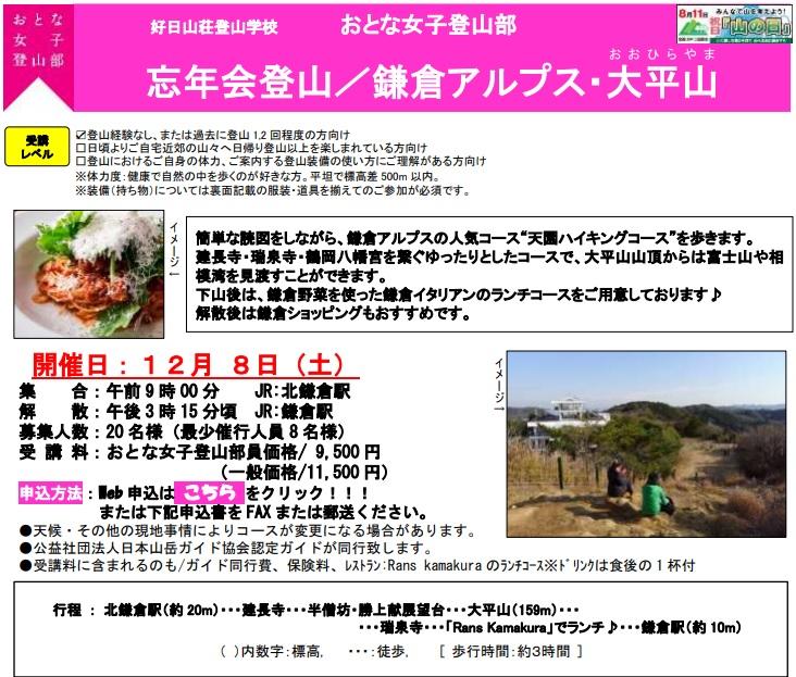 f:id:yoshinokaori:20181204112701j:plain